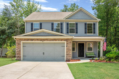 Beaufort County Single Family Home For Sale: 65 Mary Elizabeth Drive