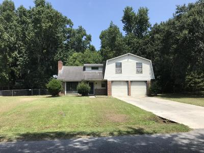 Beaufort Single Family Home For Sale: 3045 Huron Drive