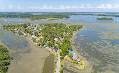 Beaufort County Single Family Home For Sale: 10 Tomahawk Trail