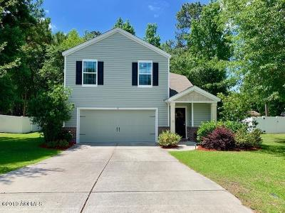 Beaufort County Single Family Home For Sale: 51 Mary Elizabeth Drive