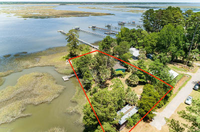 Beaufort County Single Family Home For Sale: 1 Frame Avenue