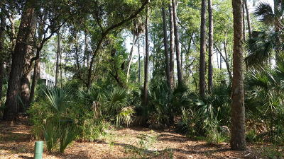 Fripp Island Residential Lots & Land For Sale: 375 Yellow Tang