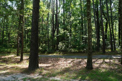 Seabrook Residential Lots & Land For Sale: 77 Barnaby Bluff