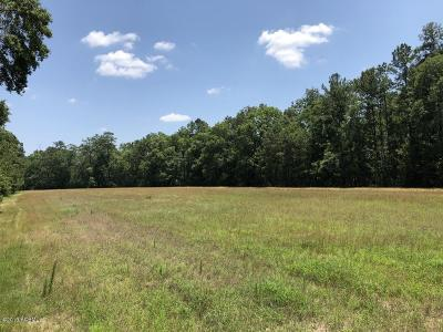 Ridgeland Residential Lots & Land For Sale: 3384 Tillman Road
