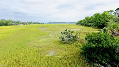 Fripp Island Residential Lots & Land For Sale: 440 Porpoise Drive