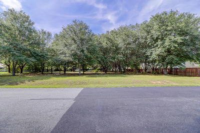 Bluffton Residential Lots & Land For Sale: 19 Long Lake Drive
