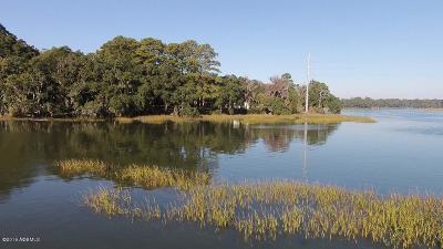Tbd Salem Farm, Beaufort, 29902 Photo 12