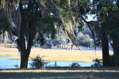 Tbd Salem Farm, Beaufort, 29902 Photo 15