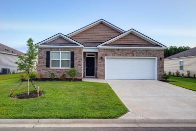 Bluffton Single Family Home For Sale: 182 Horizon Trail