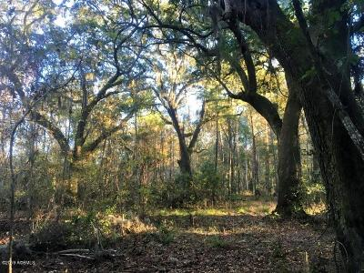 20 Bailey Road, Seabrook, SC, 29940, Northern Beaufort County Home For Sale