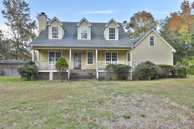Single Family Home For Sale: 959 Sea Island Parkway
