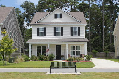 Beaufort County Single Family Home For Sale: 3860 Blue Moon Lane