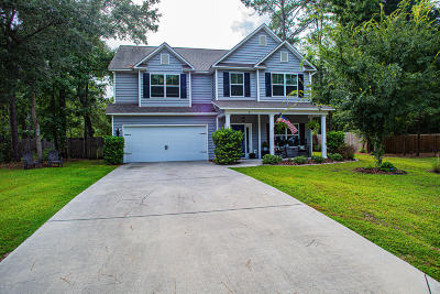Beaufort County Single Family Home For Sale: 7 Reid Court