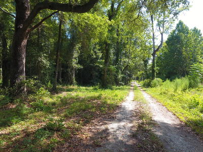 9539 Augusta, Smoaks, SC, 29481, Adjacent Counties Home For Sale