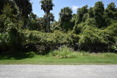 Fripp Island Residential Lots & Land For Sale: 713 Seahorse Road