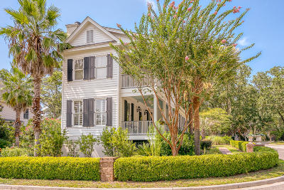 Beaufort Single Family Home For Sale: 132 Bartram Drive