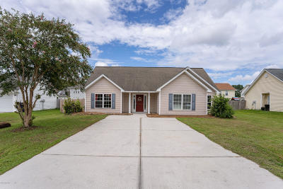 Beaufort County Single Family Home For Sale: 32 Mint Farm Drive