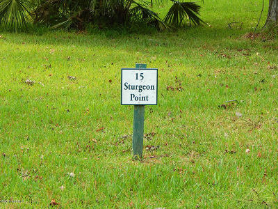 Bluffton Residential Lots & Land For Sale: 15 Sturgeon Point