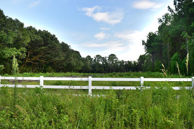 Tbd Morgan, Seabrook, SC, 29940, Northern Beaufort County Home For Sale