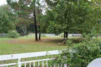 Georgetown County, Horry County Residential Lots & Land For Sale: Tbd2 John Henry Ln.