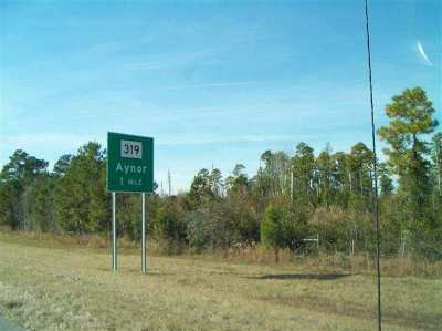 Aynor SC Residential Lots & Land Active-Hold-Don't Show: $1,231,200