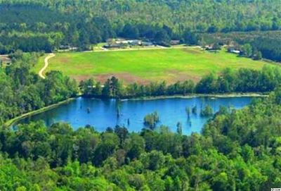 Georgetown County, Horry County Residential Lots & Land For Sale: 3877 Old Buck Creek Rd.