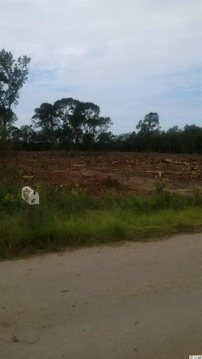 Georgetown County, Horry County Residential Lots & Land For Sale: 2823 Old Buck Creek Rd.
