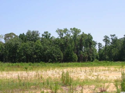 Georgetown County, Horry County Residential Lots & Land For Sale: Lot 67 Johnston Dr.
