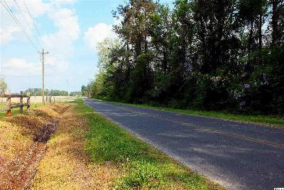 Horry County Residential Lots & Land For Sale: Lot 1 Winburn