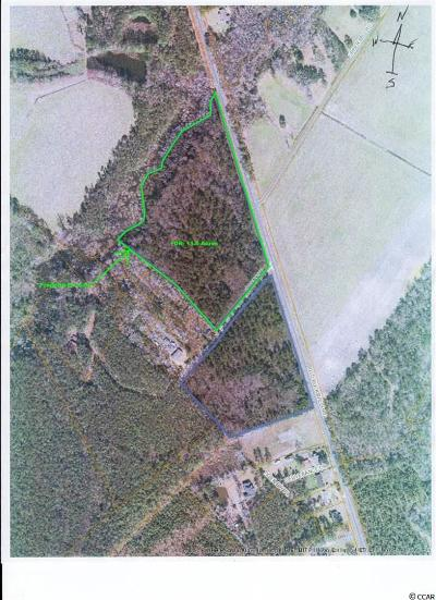 Georgetown County, Horry County Residential Lots & Land For Sale: 6254 SE Old Bucksville Rd.