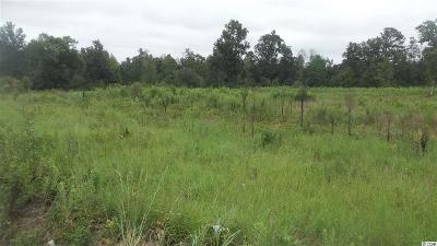 Horry County Residential Lots & Land For Sale: Nichols Hwy.