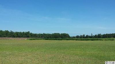 Galivants Ferry SC Residential Lots & Land Active-Pend. Cntgt. On Financi: $249,000