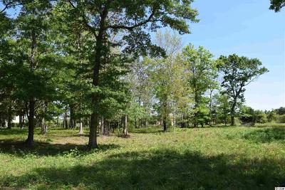 Georgetown County, Horry County Residential Lots & Land For Sale: 4110 Gray Heron Drive