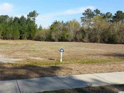 Georgetown County, Horry County Residential Lots & Land For Sale: 1461 Serena Dr.