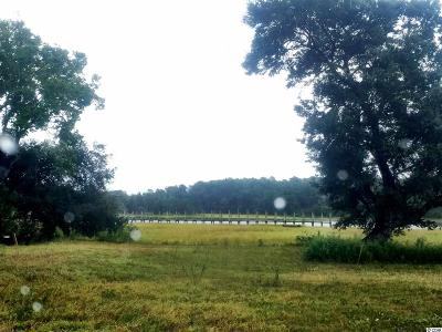 Georgetown County, Horry County Residential Lots & Land For Sale: 1516 Salt Marsh Trail