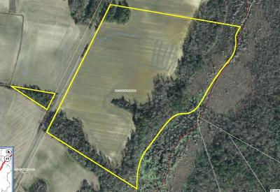 Mullins SC Residential Lots & Land Sold-Inner Office: $63,000