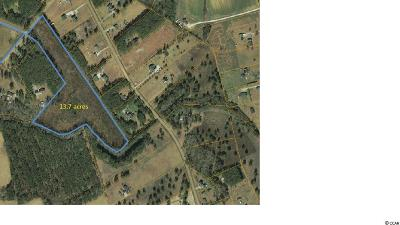 Conway SC Residential Lots & Land Active-Pend. Cntgt. On Financi: $118,900