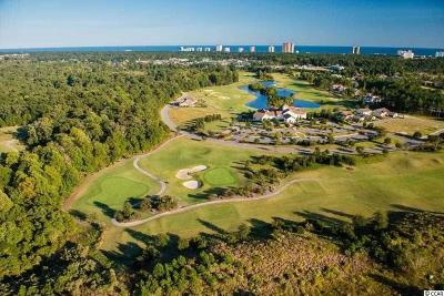 Georgetown County, Horry County Residential Lots & Land For Sale: 1920 Vercilli Way