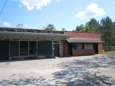 Tabor City Commercial For Sale: 305 Green Sea Rd.