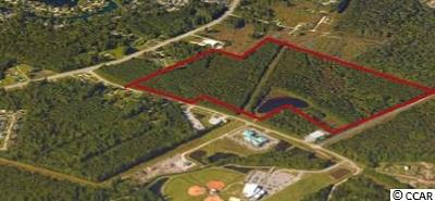 Georgetown County, Horry County Residential Lots & Land For Sale: Tbd Scipio Ln.