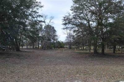 Georgetown County, Horry County Residential Lots & Land For Sale: 4303 Grey Heron Dr.