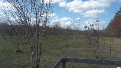 Aynor SC Residential Lots & Land For Sale: $19,500