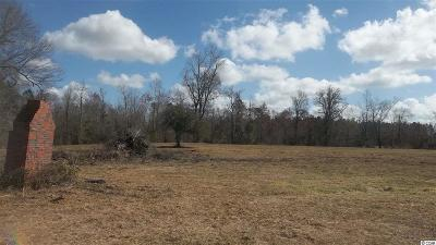 Residential Lots & Land For Sale: Nichols Hwy