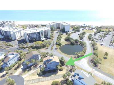Pawleys Island Single Family Home For Sale: 133 Rookery Trail