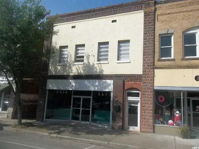 Commercial For Sale: 317 & 323 Main