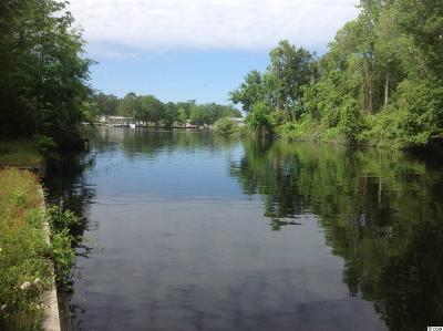 Georgetown County, Horry County Residential Lots & Land For Sale: Tbd John Henry Ln.