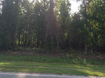 Myrtle Beach SC Residential Lots & Land Sold: $125,000