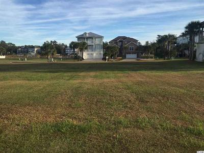 Georgetown County, Horry County Residential Lots & Land For Sale: Lot 17 Williams Island Dr.