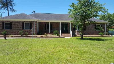 Georgetown Single Family Home For Sale: 337 Black Water Loop