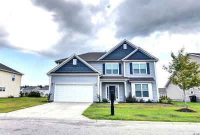Myrtle Beach Single Family Home For Sale: 3130 Bramble Glen Drive